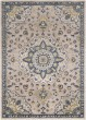 Product Image of Traditional / Oriental Navy, Butter, Ivory, Charcoal (AHN-2305) Area Rug