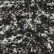 Product Image of Black, Metallic Silver, White (BUE-1000) Animals / Animal Skins Area Rug