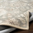 Product Image of Taupe, Cream, Grey Traditional / Oriental Area Rug