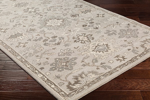 Taupe, Grey Traditional / Oriental Area Rug