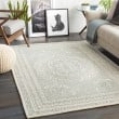 Product Image of Seafoam (WLY-2306) Bordered Area Rug