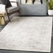 Product Image of Beige, Grey Transitional Area Rug