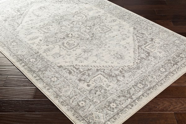 Grey (CLY-2312) Transitional Area Rug