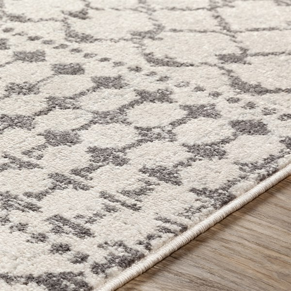 Khaki (CLY-2319) Transitional Area Rug