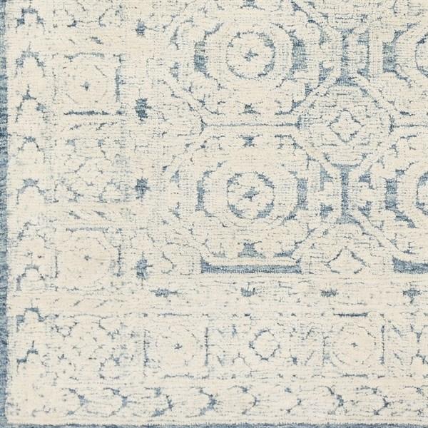 Blue, Ivory (TOL-2304) Transitional Area Rug