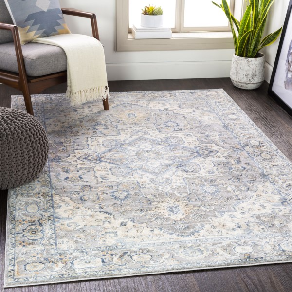 Blue, Beige (OLM-2300) Traditional / Oriental Area Rug