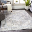 Product Image of Blue, Beige (OLM-2300) Bordered Area Rug