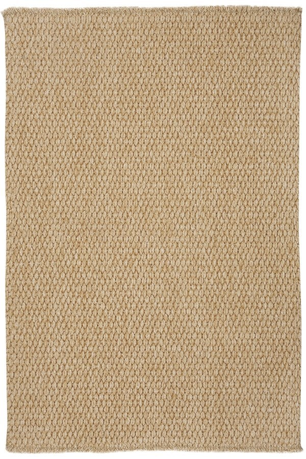 Beige Casual Area Rug