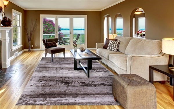 Brown, Grey (2938) Transitional Area Rug