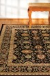 Product Image of Black, Black (090) Traditional / Oriental Area Rug