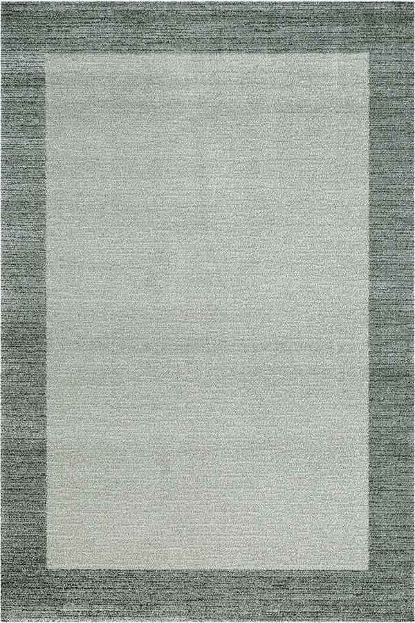 Grey (5242) Bordered Area Rug