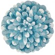 Product Image of Floral / Botanical Aqua (1828-04) Area Rug