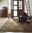 Product Image of Black (724) Traditional / Oriental Area Rug