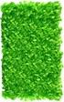 Neon Green (02286)