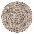 Product Image of Brown, Grey Traditional / Oriental Area Rug
