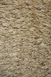 Product Image of Ivory Shag Area Rug
