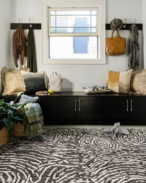 Charcoal, Silver Transitional Area Rug