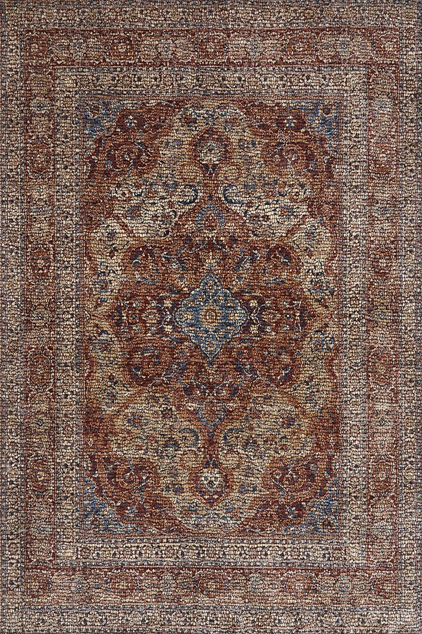 Adobe Spice Traditional / Oriental Area Rug