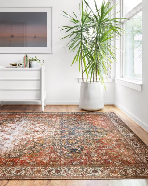 Ocean, Spice Vintage / Overdyed Area Rug