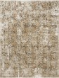 Product Image of Taupe, Gold Traditional / Oriental Area Rug