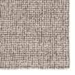 Product Image of Antique White (BRT-01) Casual Area Rug