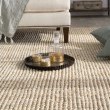 Product Image of Natural Beige (NAL-02) Casual Area Rug