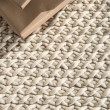 Product Image of Natural White (SCD-05) Casual Area Rug