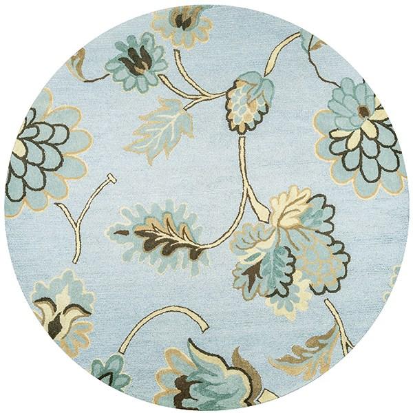 Light Blue, Beige, Dark Tan  Floral / Botanical Area Rug