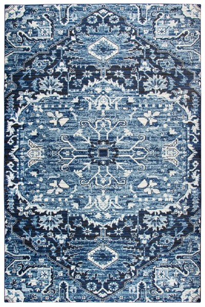 Light Blue, Dark Blue, Ivory  Traditional / Oriental Area Rug