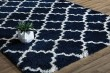 Product Image of Navy, Ivory (D) Shag Area Rug