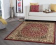 Product Image of Red, Beige, Black Traditional / Oriental Area Rug