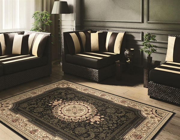 Black (4673) Traditional / Oriental Area Rug