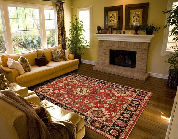 Red, Black Traditional / Oriental Area Rug