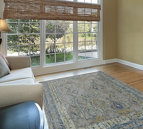 Aura Traditional / Oriental Area Rug