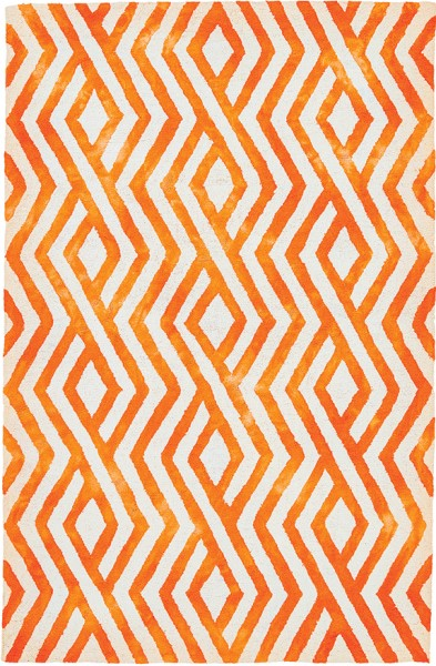 Orange Outdoor / Indoor Area Rug