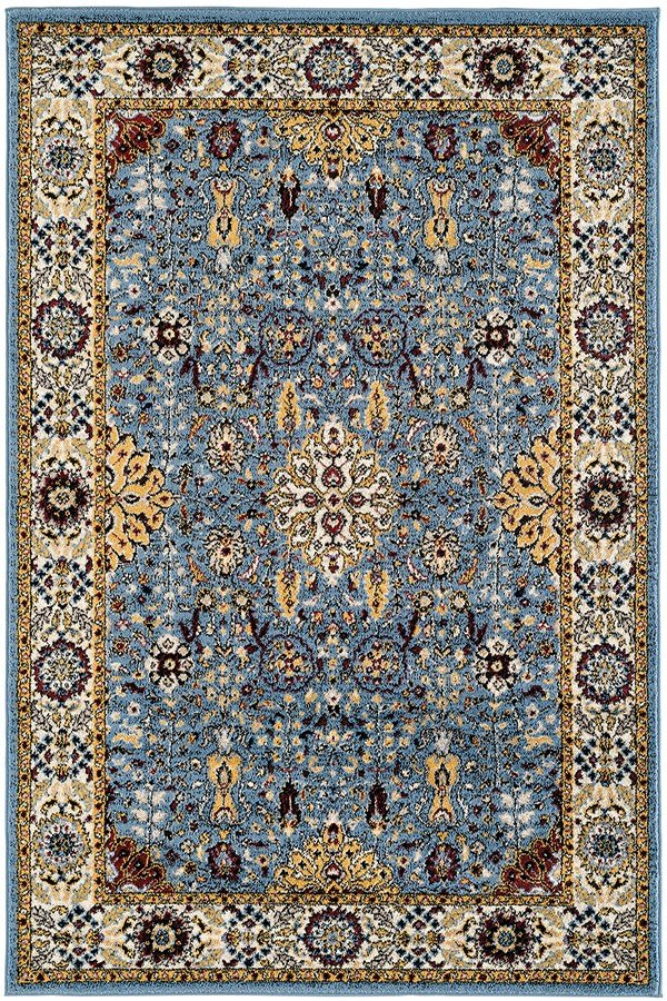 Sky Blue, Pale Yellow, Rust Traditional / Oriental Area Rug