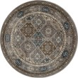 Product Image of Gray, Brown, Blue (AR-0155) Traditional / Oriental Area Rug
