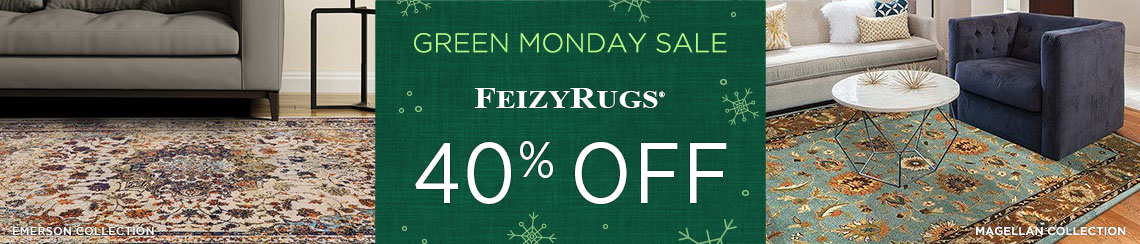 Feizy Rugs - Save 40%!