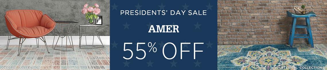 AMER Rugs - Save 55%