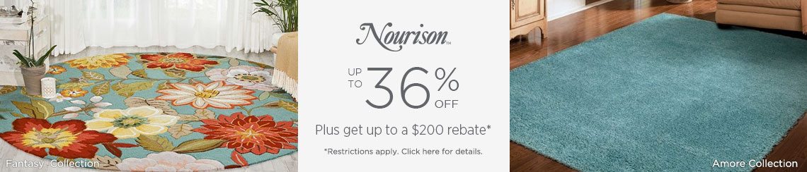 Nourison Rugs - Save 36% + get up to $200 back!