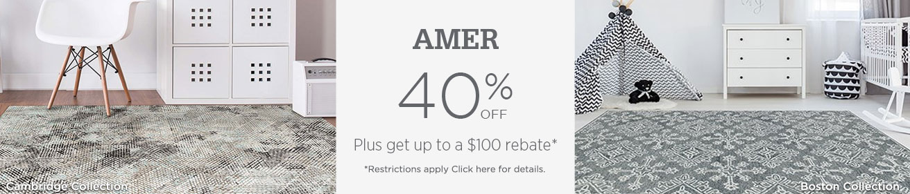 AMER Rugs - Save 40% + get up to $100 back.