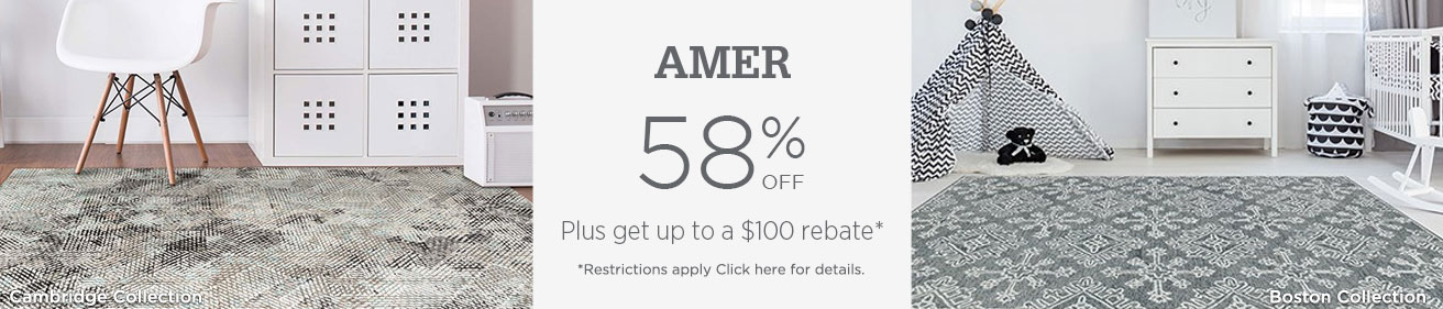 AMER Rugs - Save 58% + get up to $100 back.