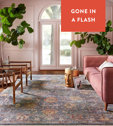 Large Rugs Flash - Save up to 70%!