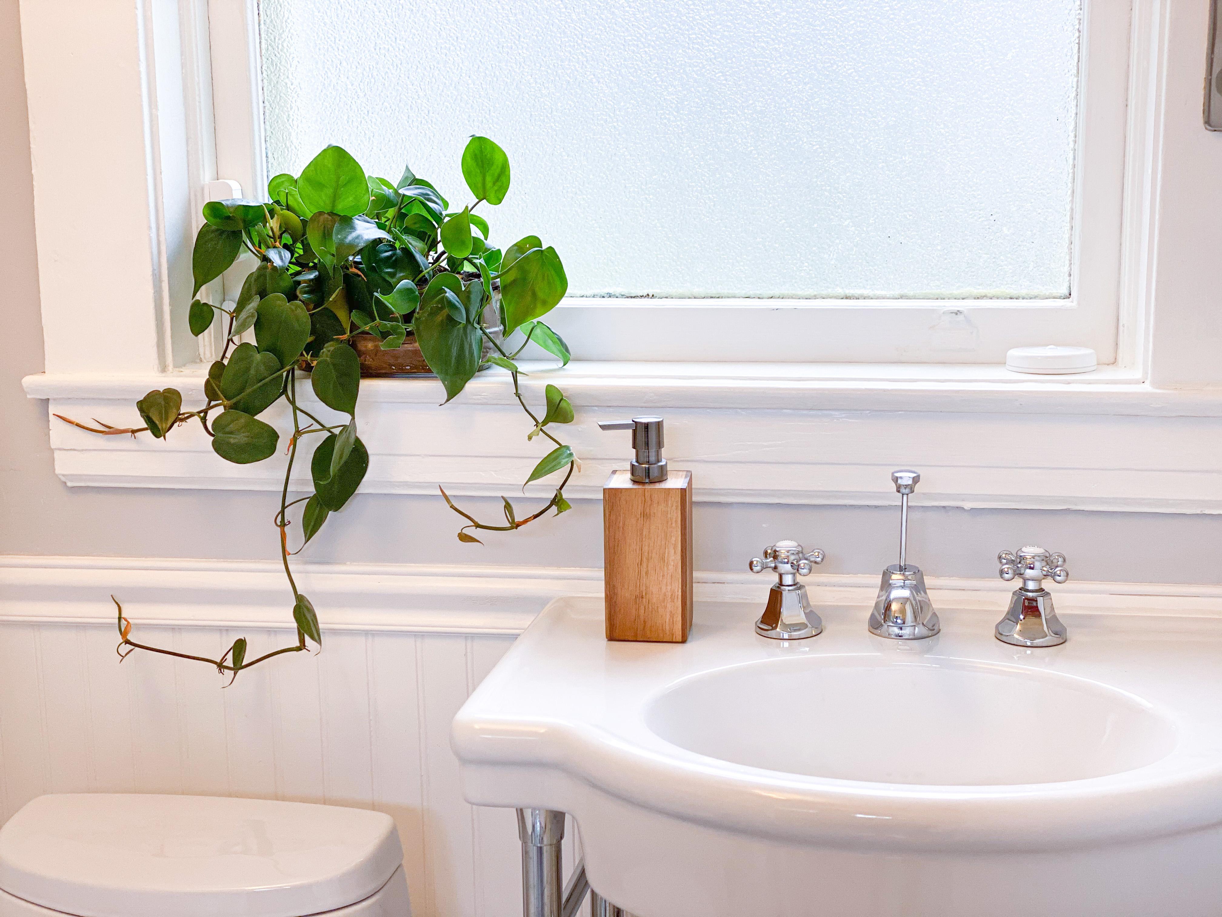Plant Power Bathroom Decor Ideas
